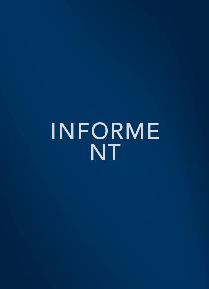 Informe NT
