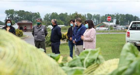 ADRA Chile realiza proyecto hortícola en la región
